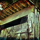 Abandoned Outhouse. by Lynne Haselden
