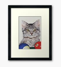 Little Pool Playing Cat Framed Print