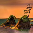 I Stand Alone by John Absher