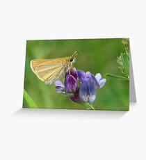 Sweet Alfalfa Greeting Card