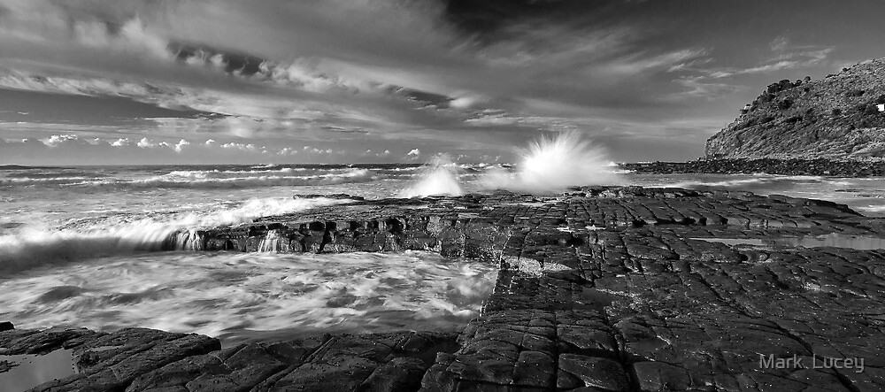 Fine Lines by Mark  Lucey