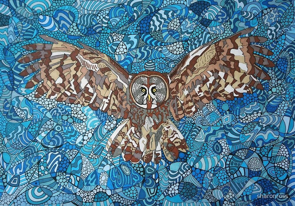 Flying Owl by sharonross