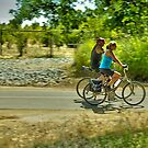 American River Bike Trail by Lenny La Rue, IPA