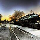 Mystery Train  by Marcia Rubin
