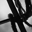 the Knot by Prakash Gupta