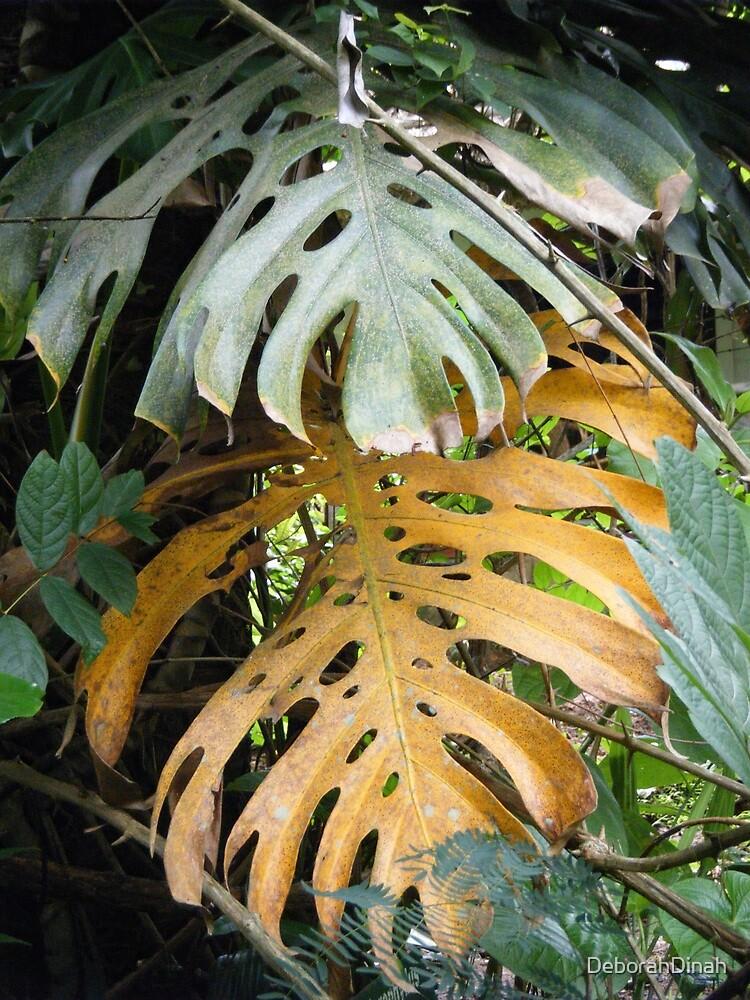 Palm Leaves Farewell by DeborahDinah