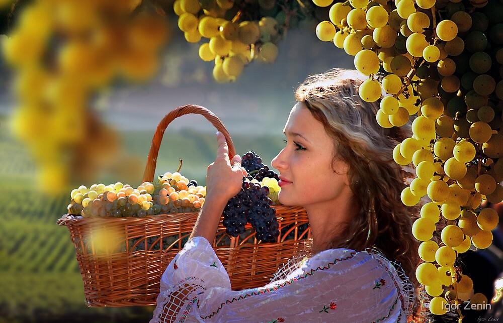 Harvest by Igor Zenin