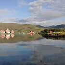 Summer dreams of Bremanger by Annbjørg  Næss
