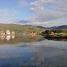 Reflections in Bermanger. by Annbjørg  Næss