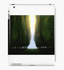 Acres iPad Case/Skin