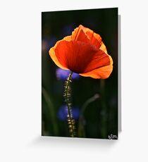 Eternal love poppies . by Brown Sugar .Favorites: 5 Views: 358 .  So happy friends !!! Woo Hoo !!! Greeting Card