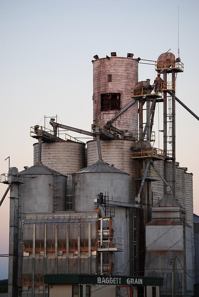 Baggett Grain by Rick McFadden