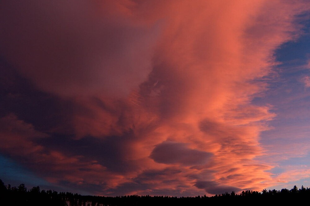 mauve sunset by Christine Ford
