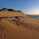 Carlo Sandblow at dawn. Rainbow Beach, Queensland, Australia. by Ralph de Zilva