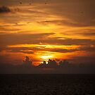 Sunset, for My Friends xxxx by LauraBroussard