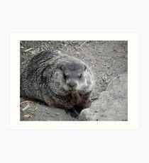Groundhog day! Art Print