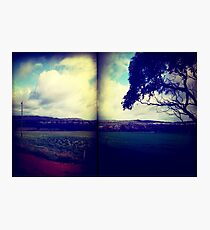 pastures Photographic Print