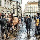 Fiaker stand at Stephansplatz Vienna by Brian Tarr