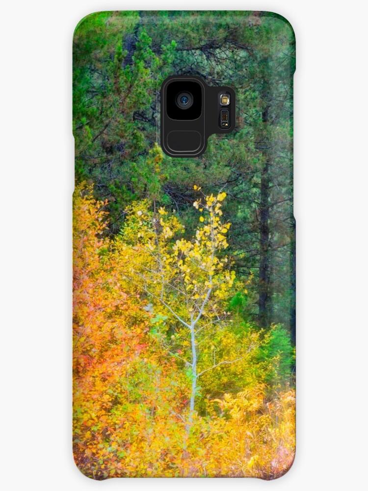 Ashton Idaho - Season Of Color (h) by IMAGETAKERS