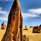 Pinnacle Glory - Western Australia by Bev Woodman