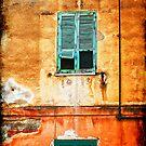 Italian green shutters by Silvia Ganora