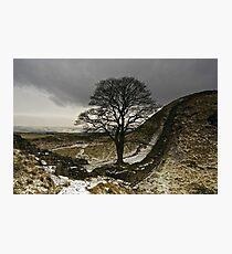 Sycamore Gap at Hadrians Wall Photographic Print
