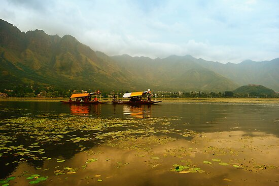 Dal Lake  by Naveen  Sharma
