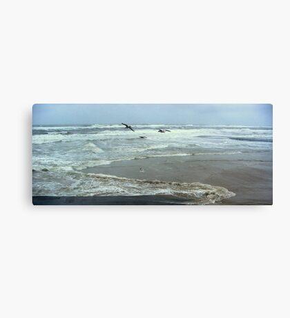 Seagulls and Sea Storm Canvas Print