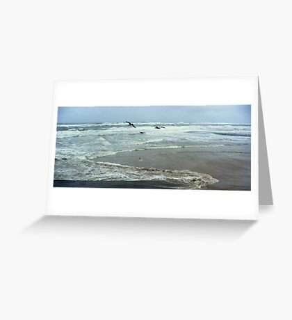 Seagulls and Sea Storm Greeting Card