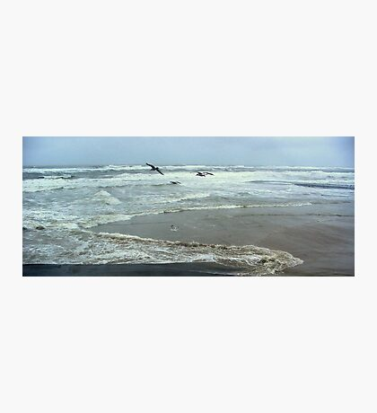 Seagulls and Sea Storm Photographic Print
