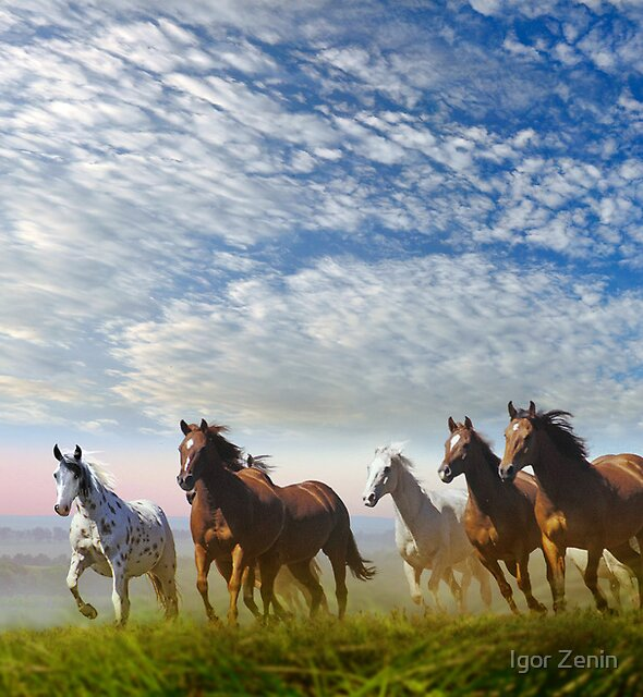 Spirit Of The Prairies by Igor Zenin