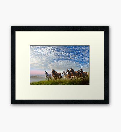 Spirit Of The Prairies Framed Print