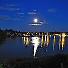 Midsummer Night's Dream by Nancy Richard
