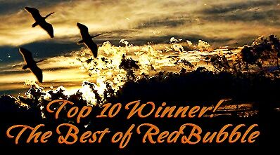 TBORB Top Ten Winner banner by rocamiadesign