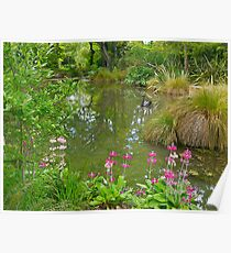 Pond, Flaxmere Garden, South Island, New Zealand.  Poster