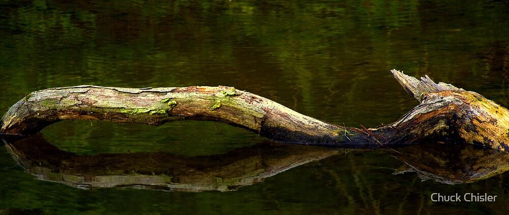 The Log Ness Monster! by Chuck Chisler