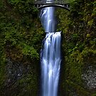 Multnomah Falls by Leasha Hooker