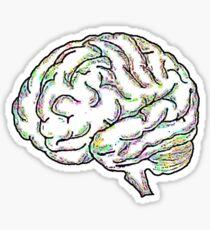 Zany Brainy Sticker