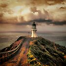 Lighthouse Cape Reinga - New Zealand. (I) by Lynne Haselden