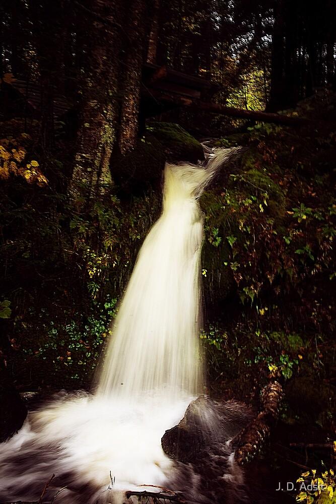 Autumn's Waters by J. D. Adsit