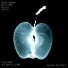Apple X-ray by Alina Uritskaya