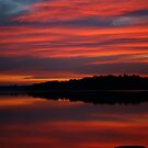 tidal sunset. anderson inlet, victoria by tim buckley | bodhiimages