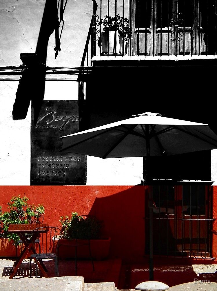 Do you See in Colour or Black and White ? Another point of view ? by Berns