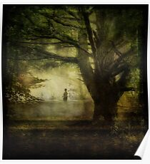 Wandering Through the Woods Poster