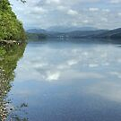 Coniston Water..West Shore by Jamie  Green