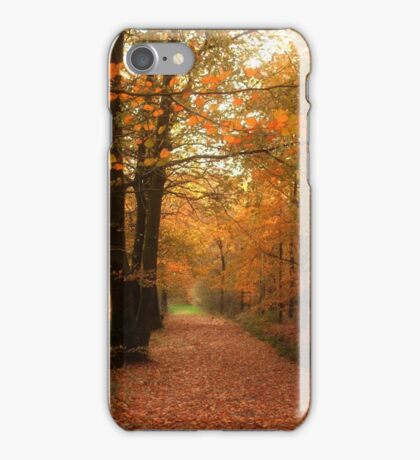 A Tribute to Fall iPhone Case/Skin