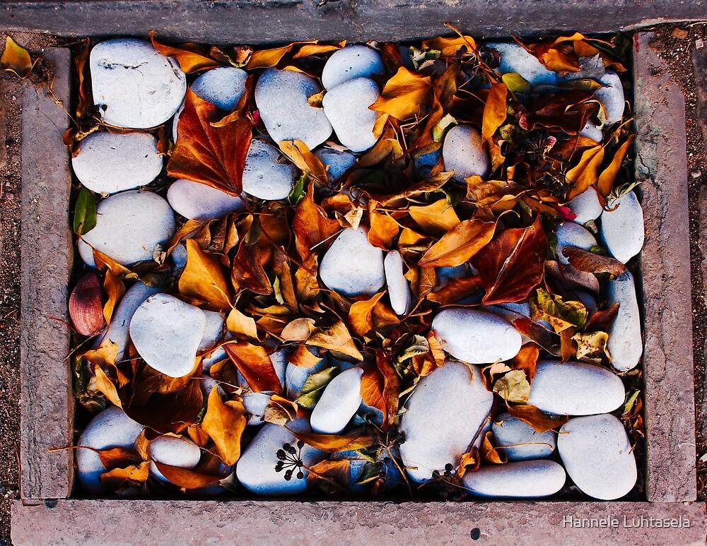 autumn drain by Hannele Luhtasela-el Showk
