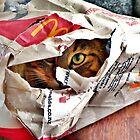 Lurking in wait of the unwary fast food junkie!  by Lynne Haselden