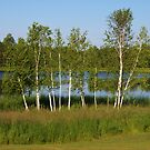 Lake Michele #3 by AuntieJ