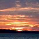 Summer Sunset by Barb White